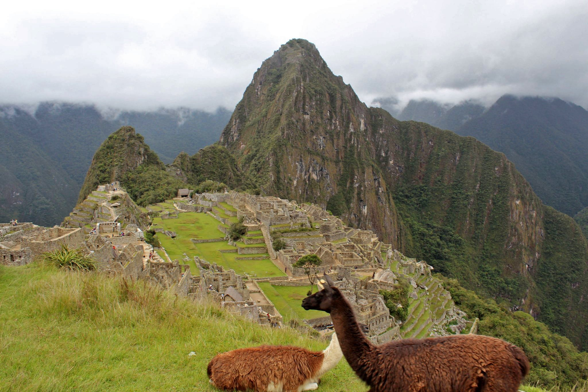 Cusco Peru Freehearted Travel